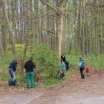 Frühjahrsputz im Barnstorfer Wald