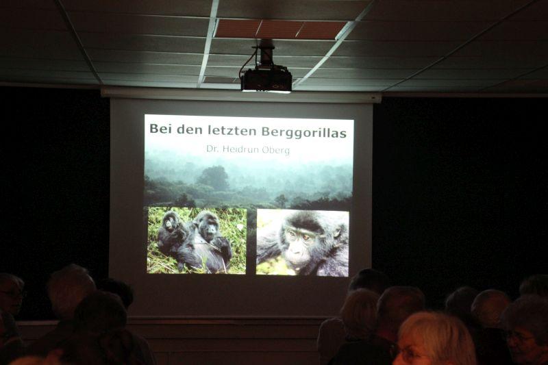 "Vortrag ""Die letzten Berggorillas"""