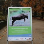 Huftiere im Zoo Rostock - Neue Ausstellung im Zoo