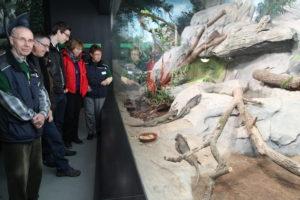 Besucherbetreuer Darwineum