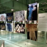 Fotoausstellung - Blaschka-Ausstellung im Darwineum