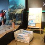 Stand Überfischung der Meere (Greenpeace Rostock) - Artenschutztag 2017