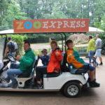 Der ZooExpress als Shuttle beim Artenschutztag 2017