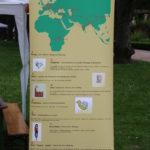 Ressourcenverbrauch der Jeans - (Upcycling Atelier) - Artenschutztag 2017