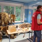 WWF Artenschutzkoffer (Zooschule Rostock) - Artenschutztag 2017
