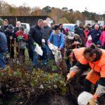 Materialausgabe - 6. Baumpflanzaktion - Bürger für Bäume