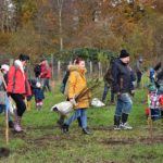 6. Baumpflanzaktion - Bürger für Bäume